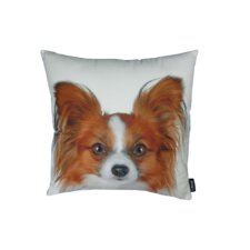 Papillion Throw Pillow