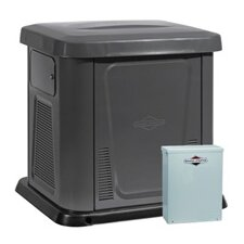 12 Kw Air-Cooled 150 Amp Dual Fuel Standby Generator in Steel Enclosure