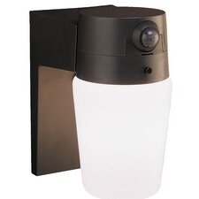 110 Degree Entryway Motion Activated 1 Light Security Light