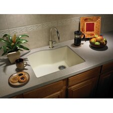 "Swanstone Classics 24"" x 21"" Single Bowl Kitchen Sink"
