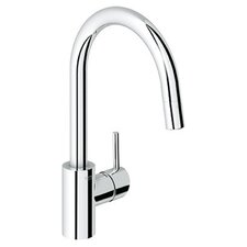 Concetto Single Handle Single Hole Standard Kitchen Faucet