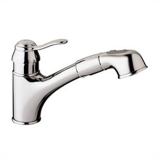 Ashford Single Handle Single Hole Standard Kitchen Faucet