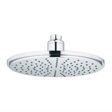 Rain Cosmopolitan Shower Head