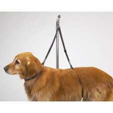 Dog Nylon Table Harness