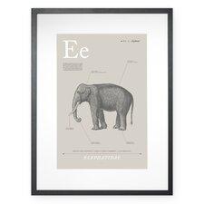 Elephant Framed Graphic Art
