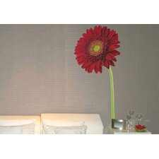 Foto Gerbera Wall Decal