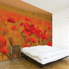 Multi Field of Poppies Wall Mural