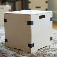 Cube Storage Box (Set of 2)