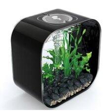 Life Aquarium Tank
