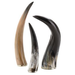 Decorative Horn Object