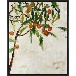Kumquat Tree Framed Print