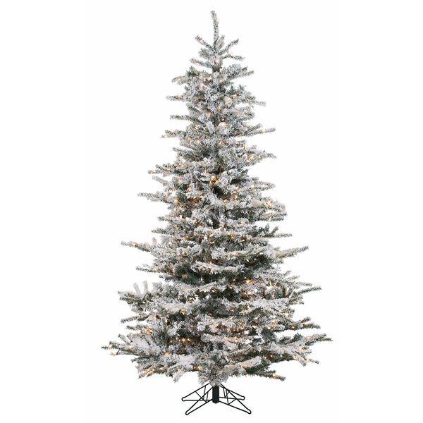 7.5' Flocked Fremont Spruce Christmas Tree with 750 Clear Lights