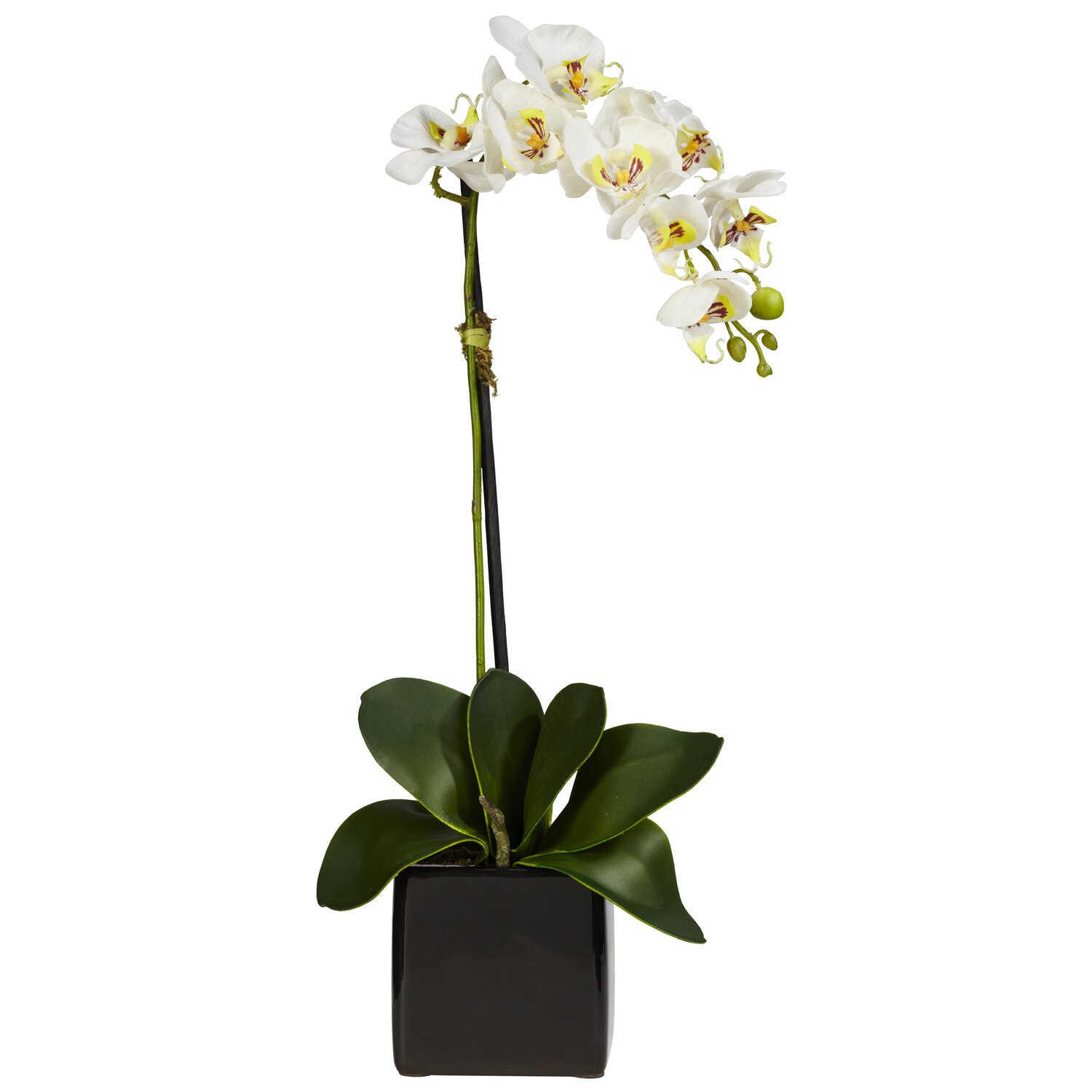 Patio wall decorations - Phalaenopsis Orchid With Black Vase Silk Flowers By Nearly Natural