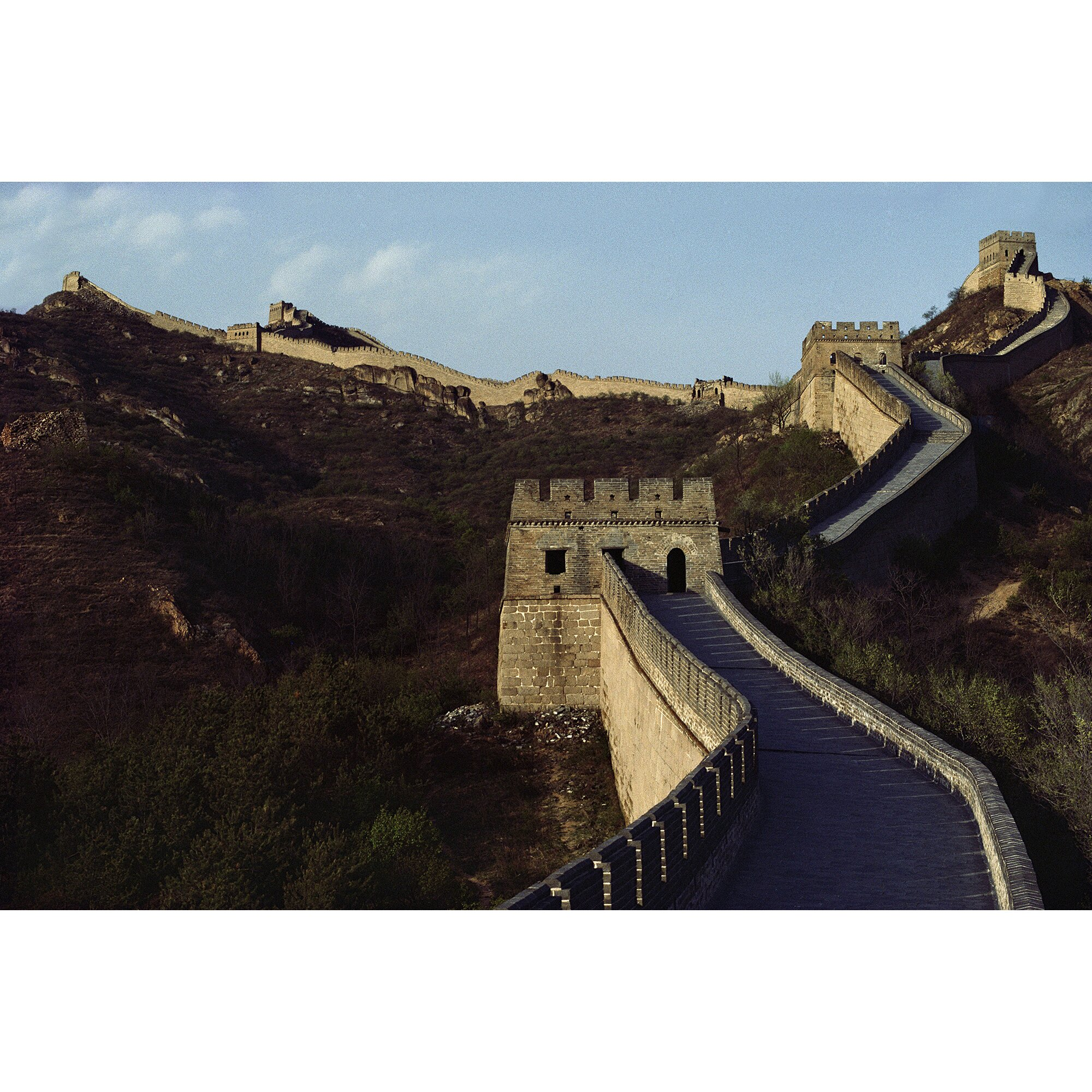 national geographic great wall of china wall mural wayfair national geographic bears wall mural jet com