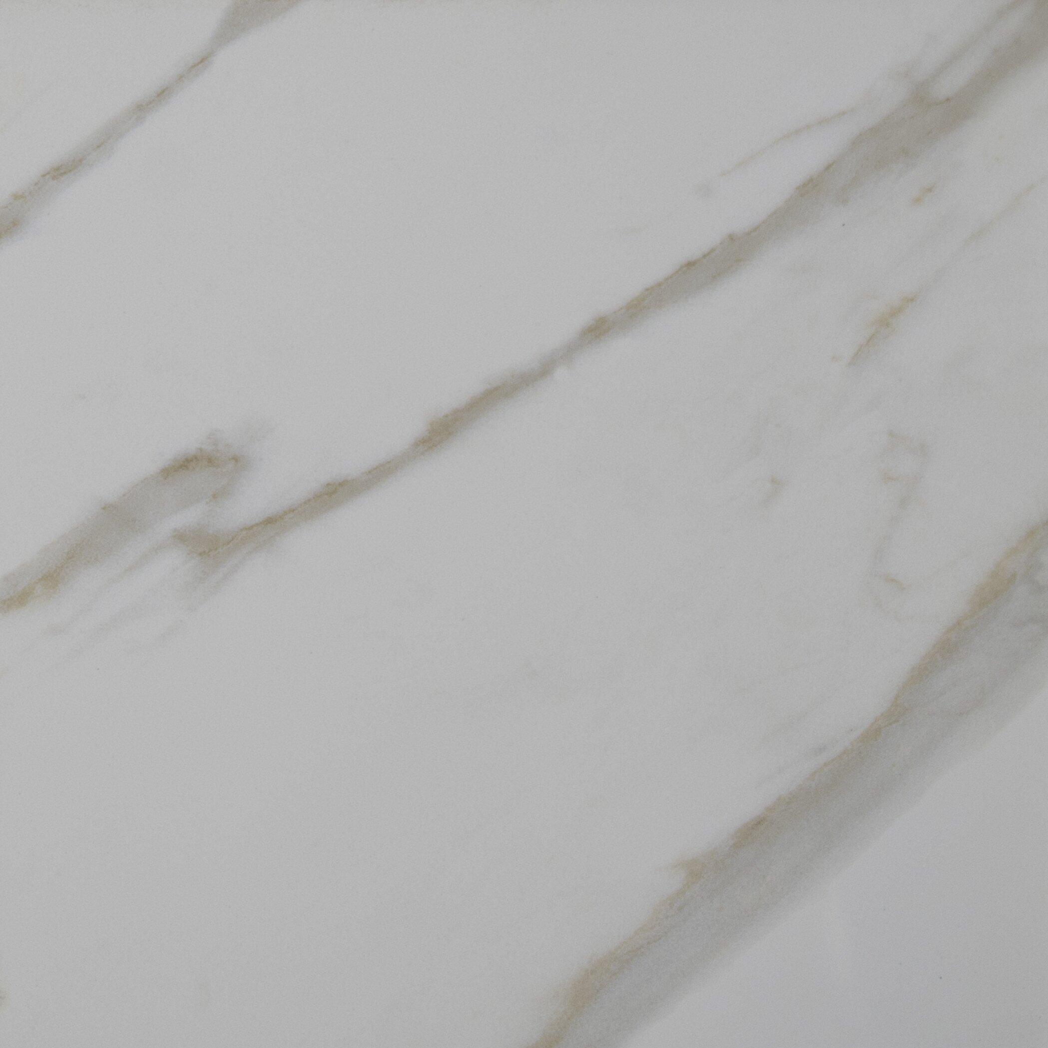 Pietra Calacatta 12 Quot X 12 Quot Porcelain Field Tile In White