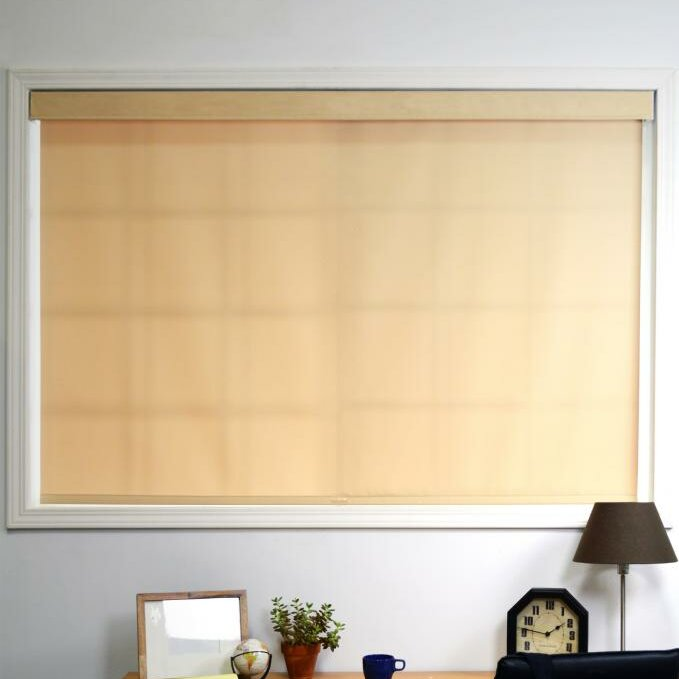 Chicology Mountain Cordless Privacy Thermal Roller Shade Amp Reviews Wayfair