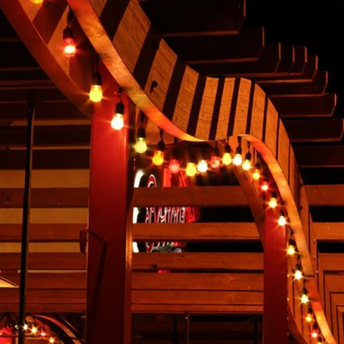 American Lighting LLC 20 Ft Globe String Lights Reviews Wayfair