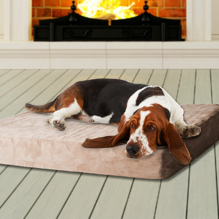 memory foam dog bed with removable cover wayfair. Black Bedroom Furniture Sets. Home Design Ideas