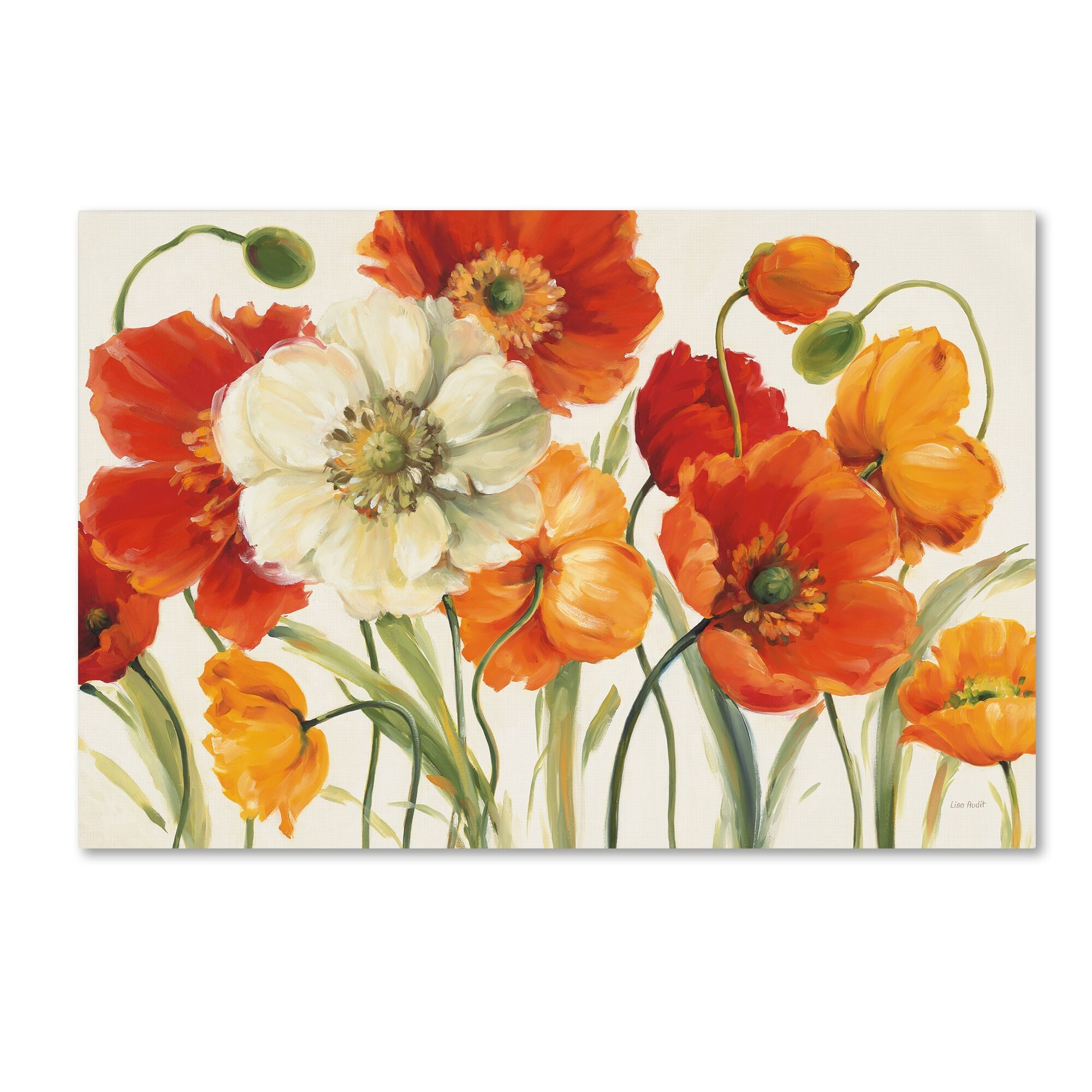 Poppies melody by lisa audit painting print on wrapped for Colores de pintura para sala