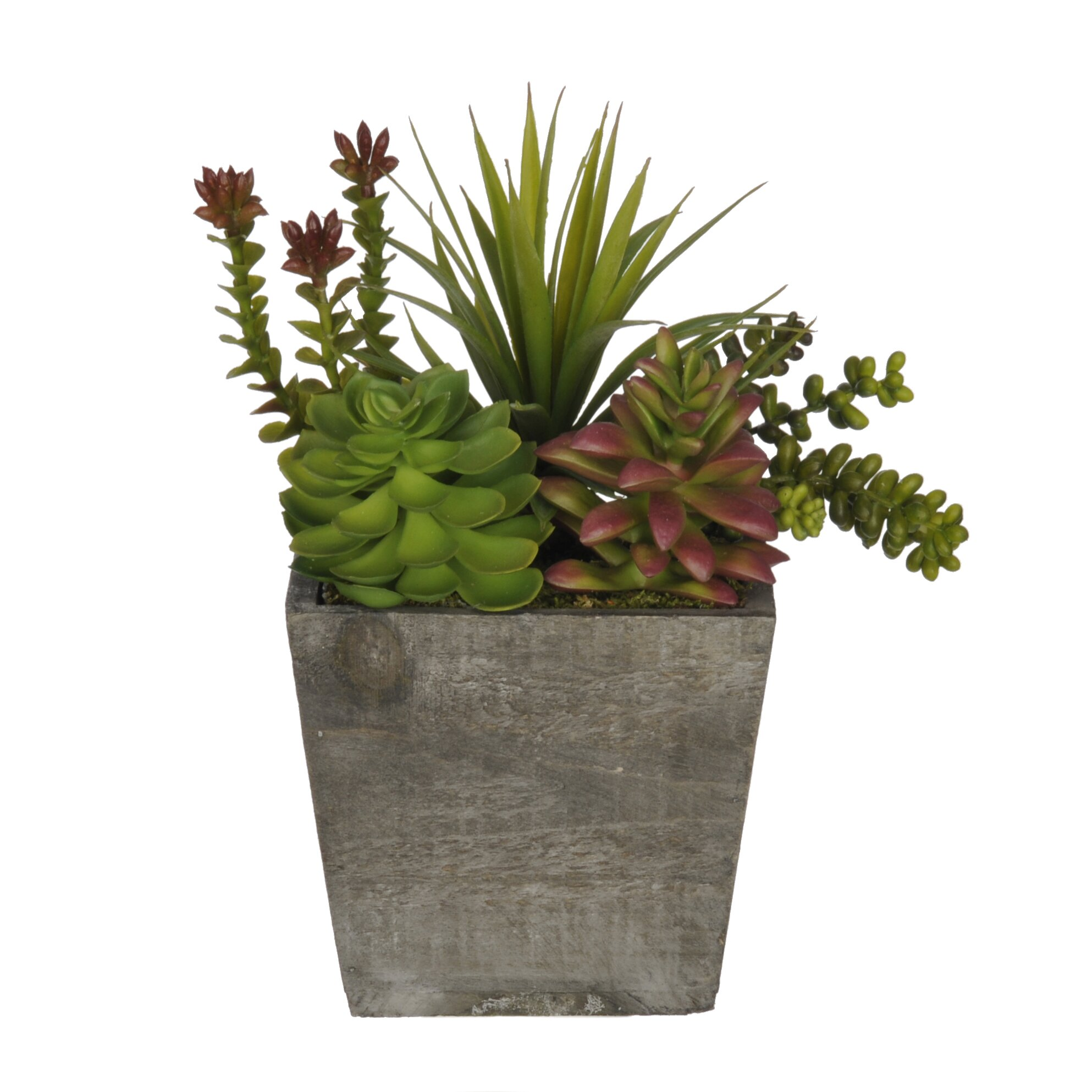 Image Result For Accents For Home And Gardena
