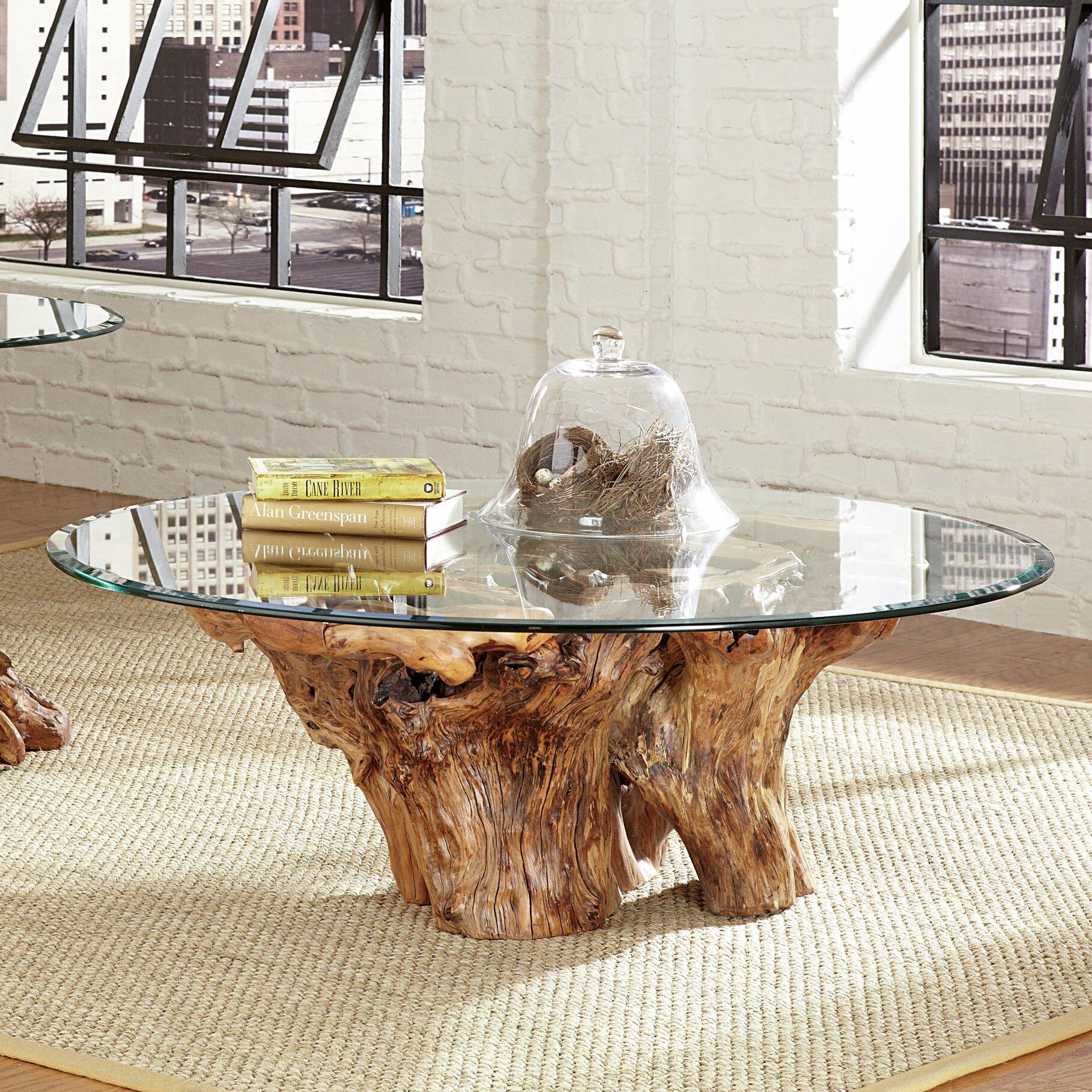 Hidden Treasures Root Ball Coffee Table