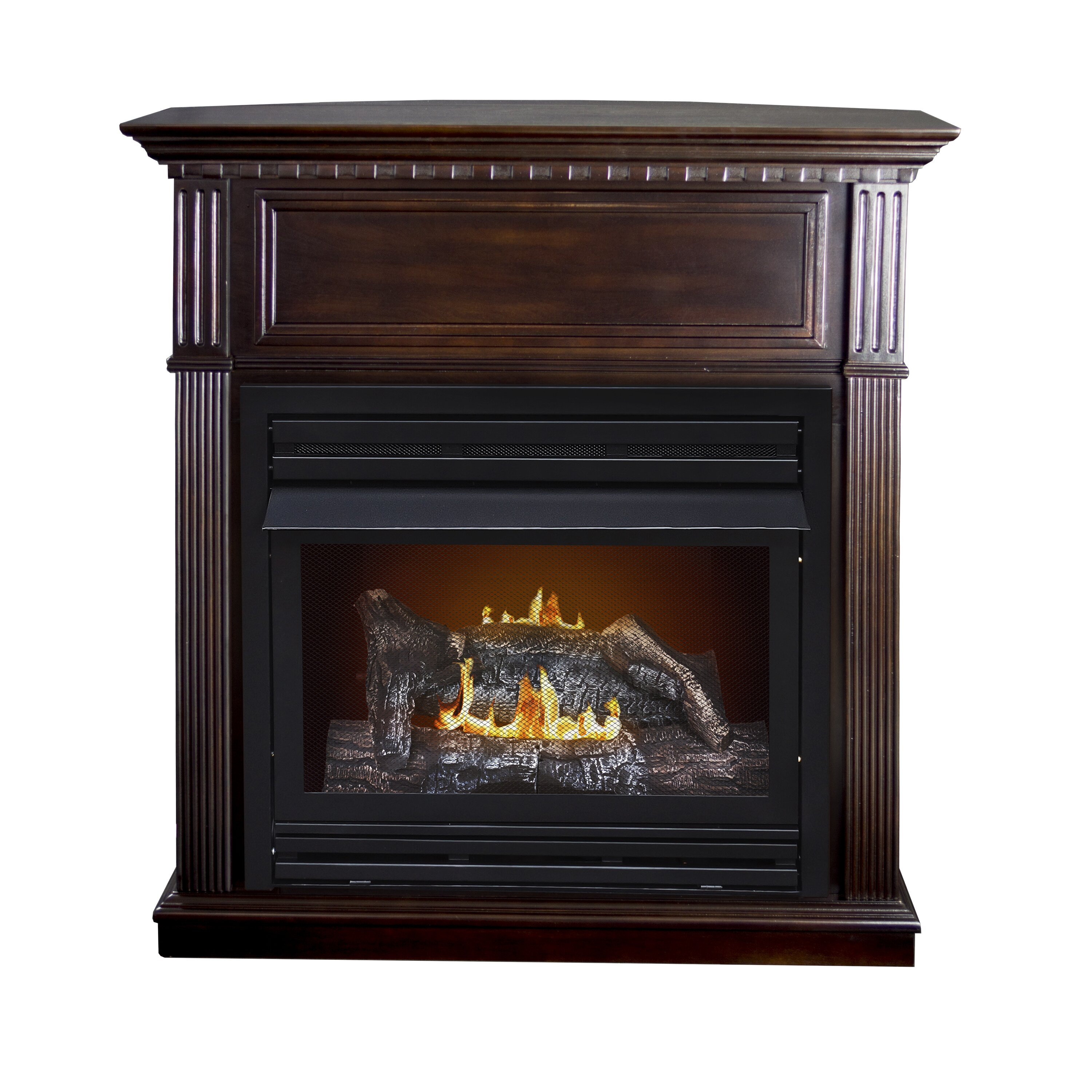 Dual Fuel Vent Free Natural Gas Fireplace