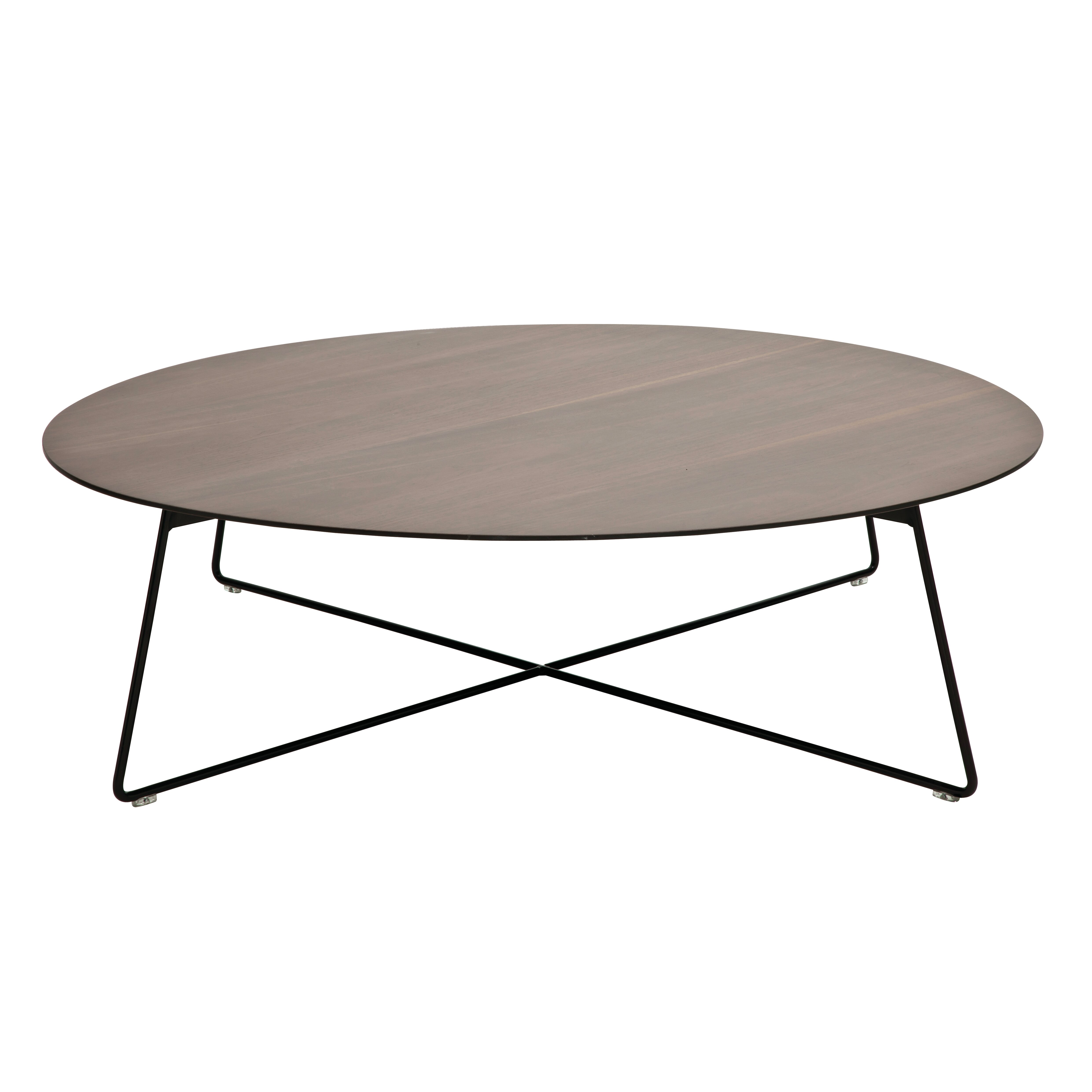 Oval Coffee Table Malaysia: B&T Design Fly Oval Coffee Table