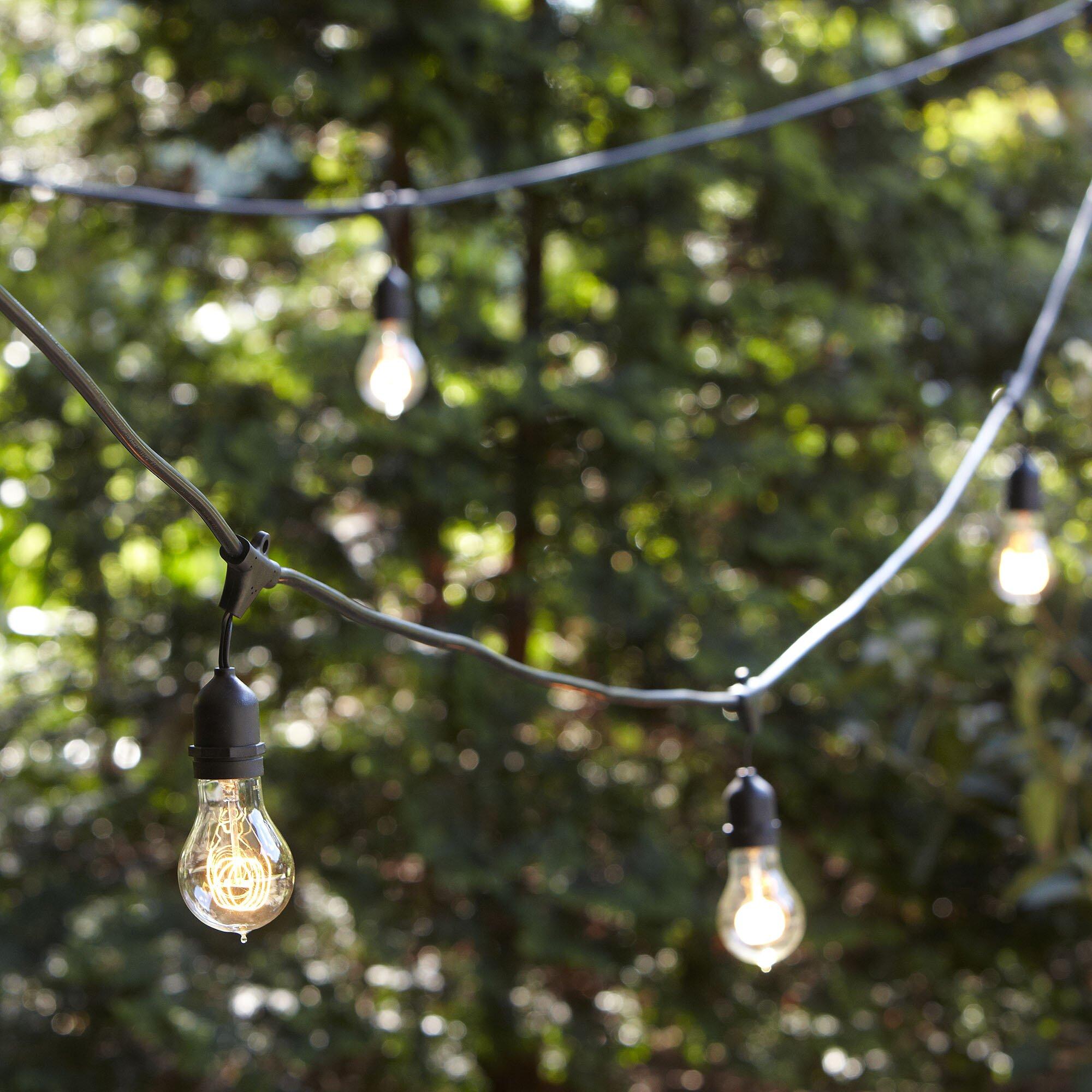 vintage edison string lights wayfair. Black Bedroom Furniture Sets. Home Design Ideas