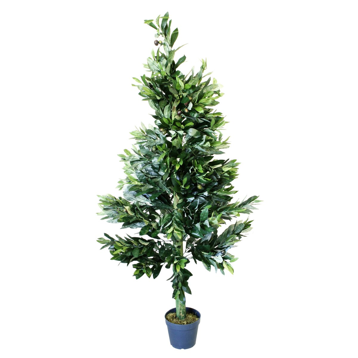 Artificial olive tree wayfair uk for What to plant under olive trees