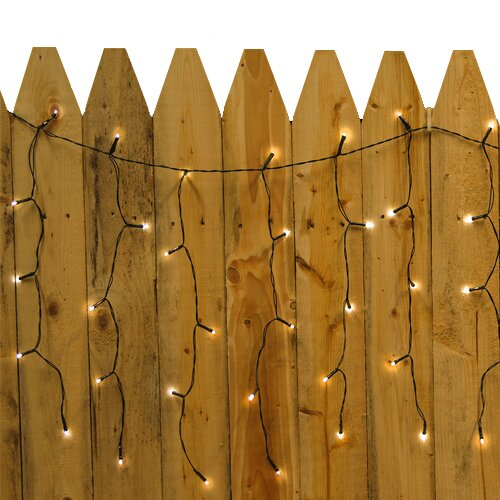 Solar Curtain String Lights : Droplite 100 Solar Curtain String Lights Wayfair