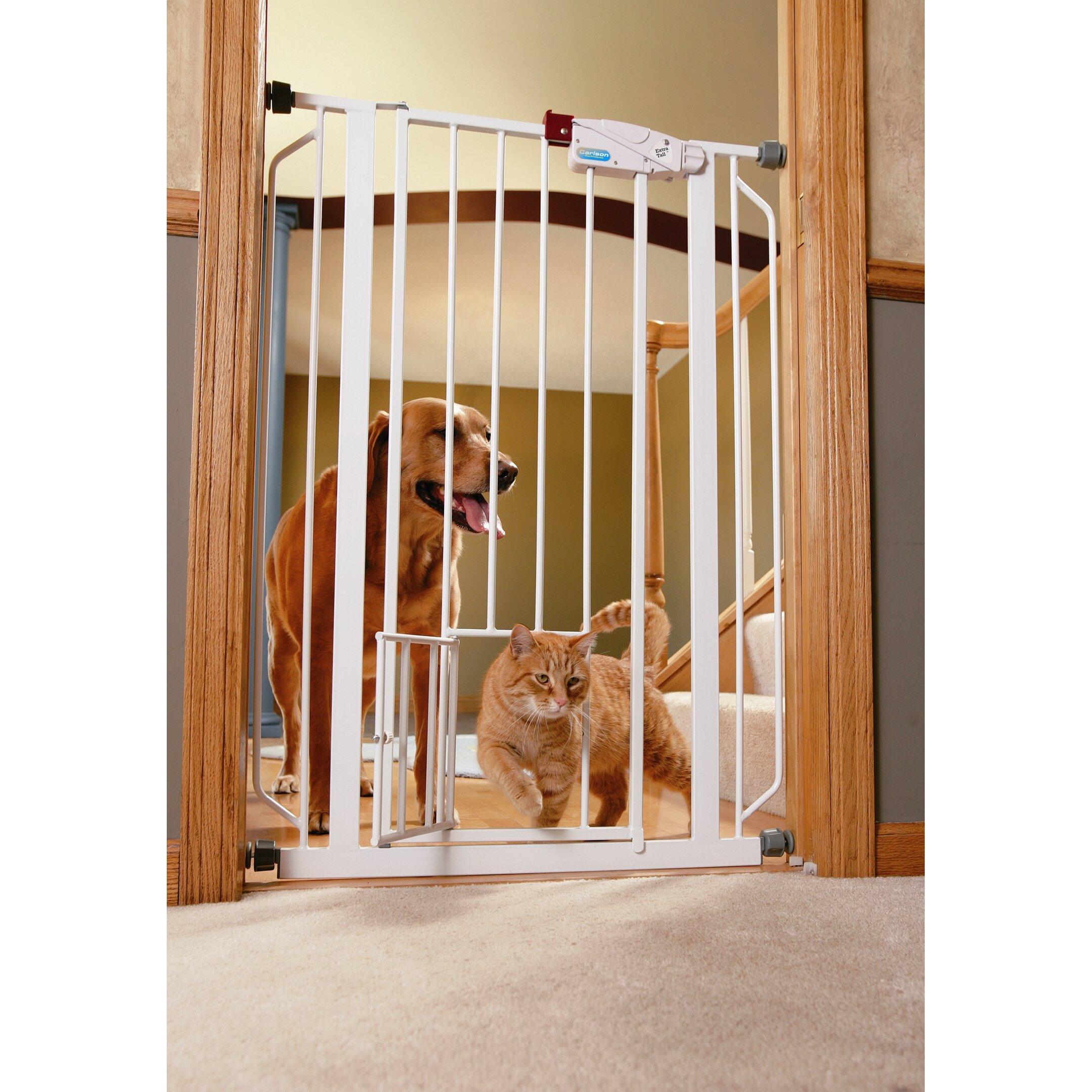 How To Take Cat Door Off Of Pet Gate