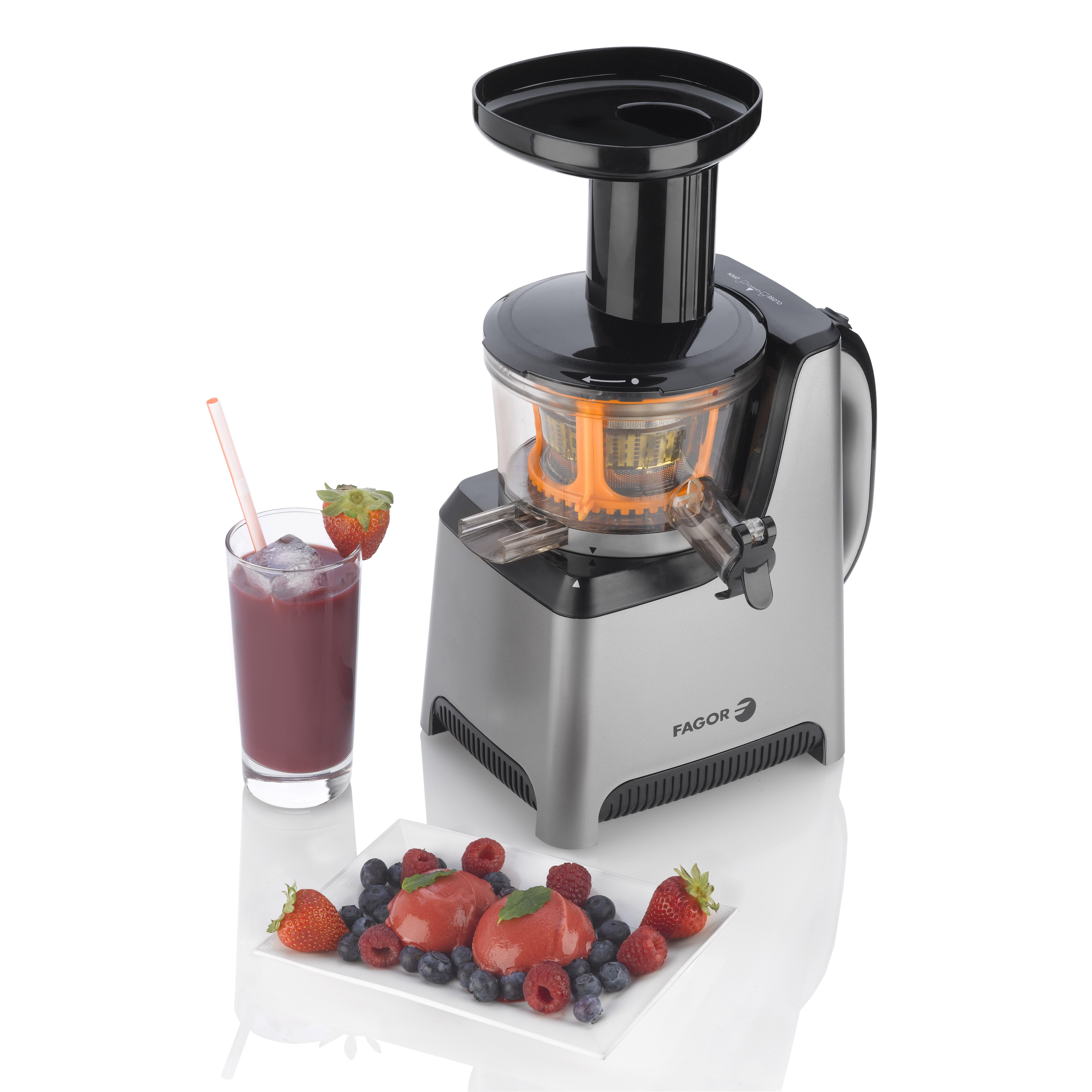 Slow Juicer Fagor : Fagor Platino Slow Juicer and Sorbet Maker AllModern