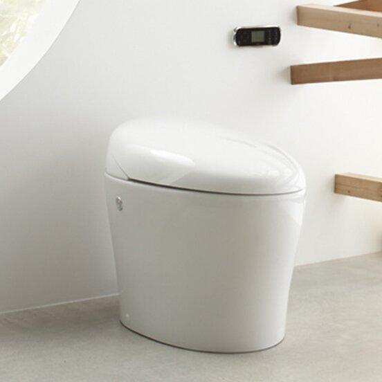 karing skirted one piece elongated toilet with bidet. Black Bedroom Furniture Sets. Home Design Ideas