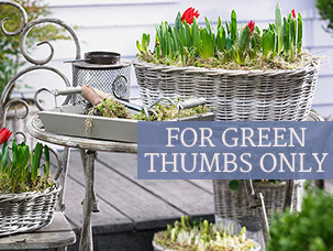 For Green Thumbs Only