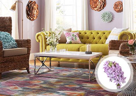 Signs of Spring: Hyacinth